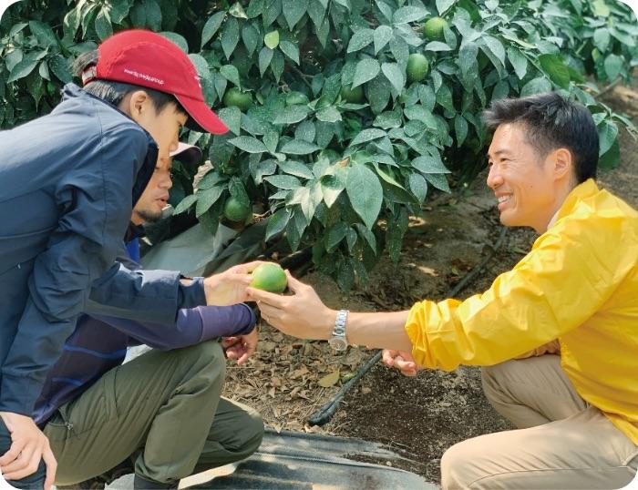 先端的な柑橘農業を現場で学ぶ